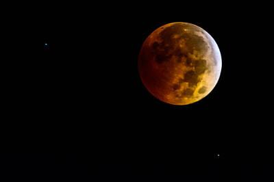 Photograph - Blood Moon by Randy Scherkenbach