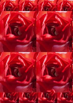 Artistic License Photograph - Blood Red Rose Graphics Colormania Art by Navin Joshi