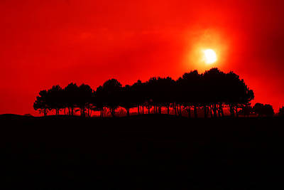 French Countryside Photograph - Blood Red Sky by Aidan Moran