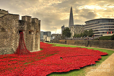 Fallen Soldier Photograph - Blood Swept Lands by Rob Hawkins