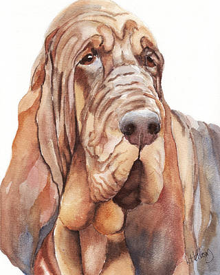 Bloodhound Painting - Bloodhound by Greg and Linda Halom