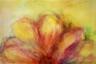 Bloom  Art Print by Ann Powell