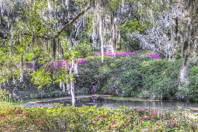 Photograph - Blooming Azaleias by Dale Powell