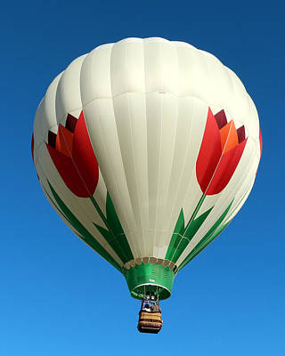Photograph - Blooming Balloon by George Jones