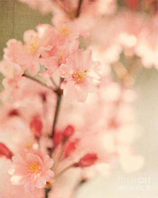 Blooming Season Print by Kim Fearheiley