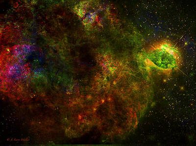 Digital Art - Blooms In Space by J Larry Walker