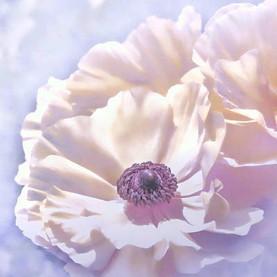 Photograph - Blooms by Kim Swanson