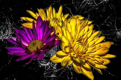 Purple Flowers Digital Art - Blooms On Broken Glass by Bill Tiepelman