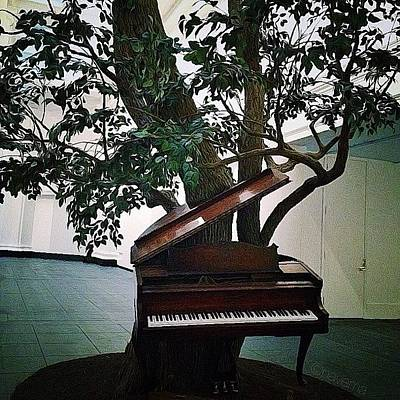 Piano Photograph - 'blossom' By Sanford Biggers by Natasha Marco