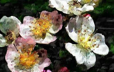 Digital Art - Blossom by David Lane