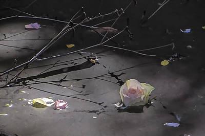 Blossom Rain 17 Art Print by Georg Kickinger