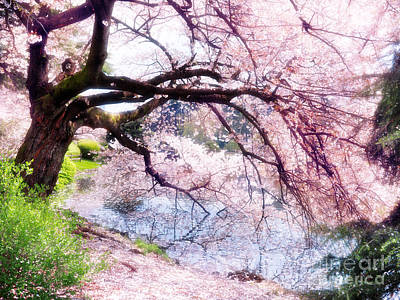 Blossoming Cherry Tree Touching Water Art Print by Oleksiy Maksymenko