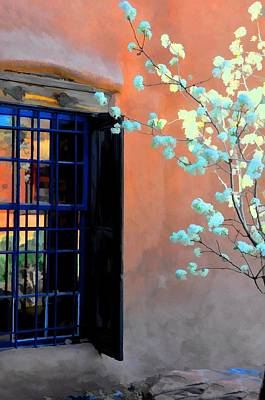 Photograph - Blossoms And Stucco by Jan Amiss Photography