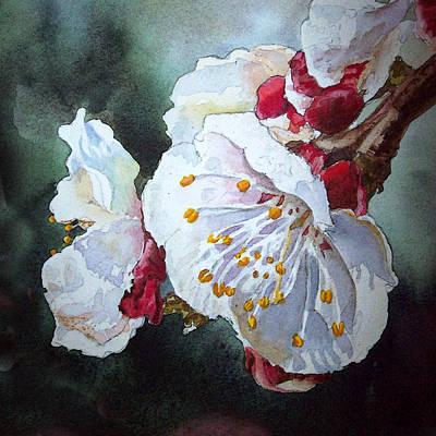 Apricot Painting - Blossoms by Irina Sztukowski
