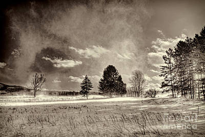 Photograph - Blowing Snow Canaan Valley by Dan Friend