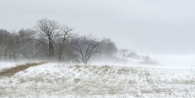 Blowing Snow Over Fields And Forest Art Print