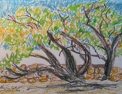 Drawing - Blown By The Wind by Esther Newman-Cohen