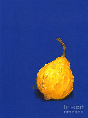 Blue And Gold Squash #1 Art Print by Marcie Heacox