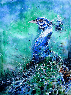 Painting - Blue-and-white Peafowl by Zaira Dzhaubaeva
