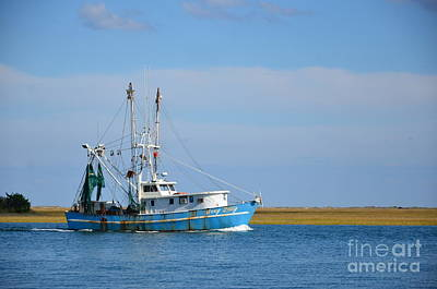 Photograph - Blue And White Shrimp Boat by Bob Sample