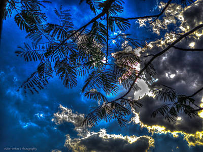 Art Print featuring the photograph Blue And Yellow Skies by Ross Henton