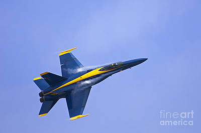Photograph - Blue Angel - D008945 by Daniel Dempster
