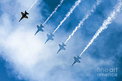 Photograph - Blue Angels by Kate Brown