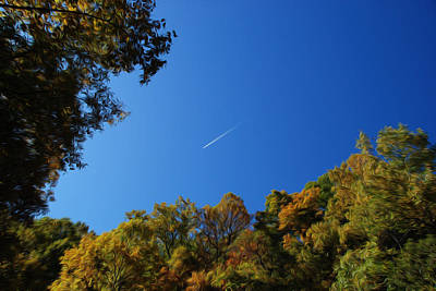 Photograph - Blue Autumn Skies by Kelvin Booker