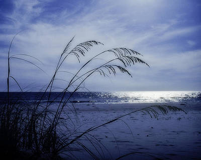 Photograph - Blue Beach by David and Carol Kelly