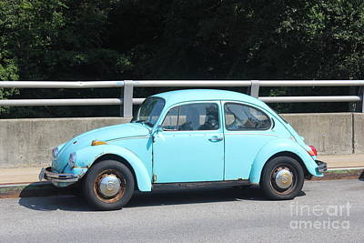 Photograph - Blue Beetle by Lotus