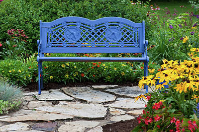 Blue Bench And Stone Path In A Flower Art Print