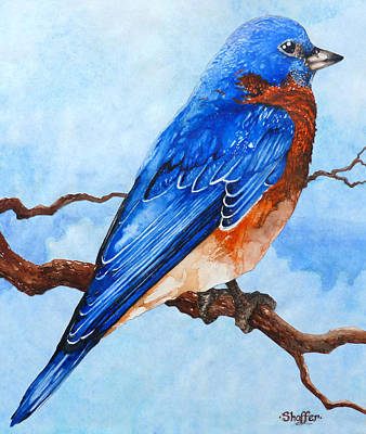 Art Print featuring the painting Blue Bird by Curtiss Shaffer