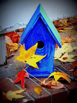 Art Print featuring the photograph Blue Bird House by Rodney Lee Williams