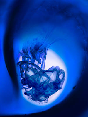 Photograph - Blue Birth by Cara Moulds