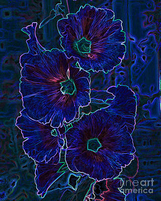Photograph - Blue Blossoms by Mike Flake
