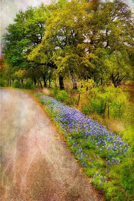 Blue Bonnet Path Art Print by Joan Bertucci