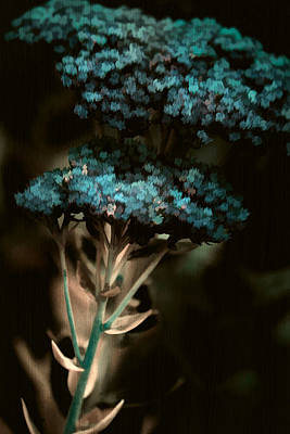 Blue Bouquet Print by Bonnie Bruno