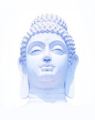 Buddha Wall Art - Photograph - Blue Buddha by Tim Gainey
