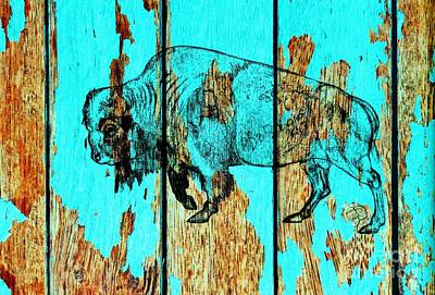 Drawing - Blue Buffalo 3 by Larry Campbell
