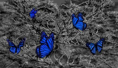 Mixed Media - Blue Butterflies 2 by Barbara St Jean