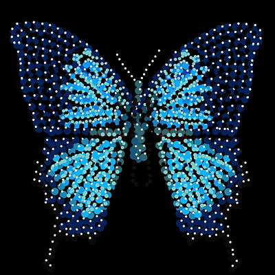 Blue Butterfly Black Background Art Print