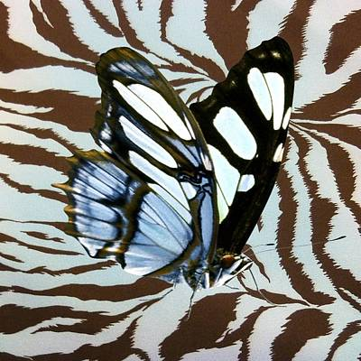 Mixed Media - Blue Butterfly On Giraffe Print by Florene Welebny