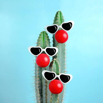 Photograph - Blue Cactus Decorated With Sunglasses by Juj Winn
