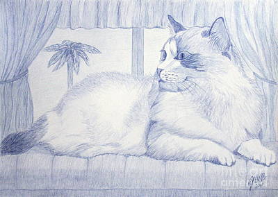 Blue Cat Art Print by Cybele Chaves