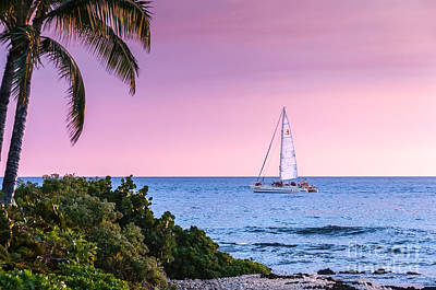 Venice Beach Bungalow - Blue Catamaran Sunset by Al Andersen