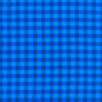 Blue Checkered Tablecloth Fabric Background Art Print by Keith Webber Jr
