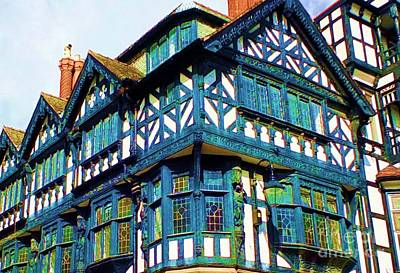 Photograph - Blue Chester by Vicky Tarcau