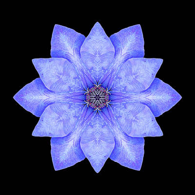 Print featuring the photograph Blue Clematis Flower Mandala by David J Bookbinder