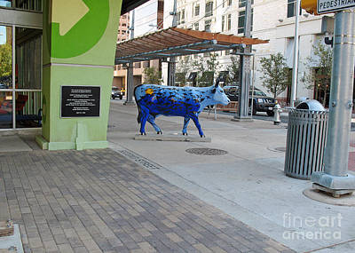 Photograph - Blue Cow In Colorful Austin 2008 by Connie Fox