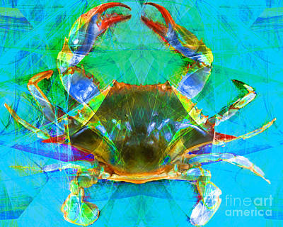 Crawfish Photograph - Blue Crab 20140206v2 by Wingsdomain Art and Photography